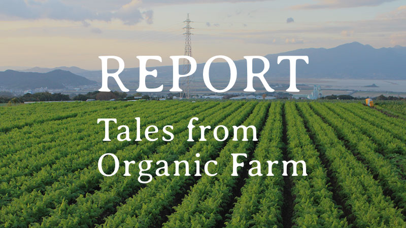 REPORT|Tales from Organic Farm